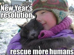 Rescued More Humans